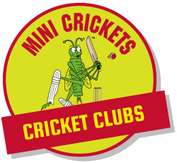 Childrens Cricket Clubs