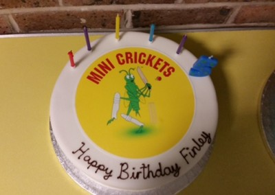 kids_cricket_parties_cake