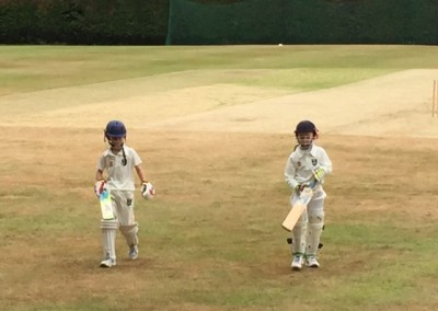 mini_crickets_cricketers