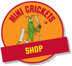 Childrens Cricket Shop
