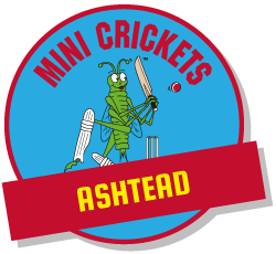 kids cricket classes ashtead
