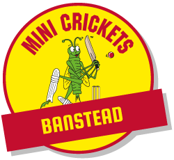 kids cricket classes banstead