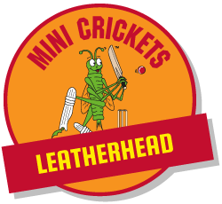 kids  cricket classes leatherhead