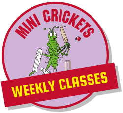 Childrens Cricket Classes