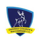 kids cricket classes chip stead club logo